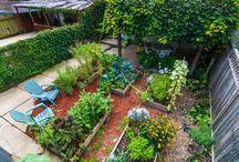 Gardens & Greens