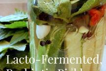 cultures and fermenting