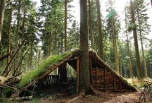 Bushcraft House