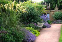 Beacon Hill Secret Garden