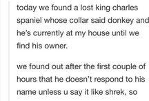 Shrek <3