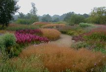 Natural Style Grass & Perennial Plantings