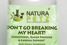 Don't Go Breaking My Heart / Don't Go Breaking My Heart is used holistically for a variety of preventative heart related supports, including to lower bad cholesterol and high blood pressure; for hypertension & to reduce the risk of coronary & cardiac illness by regulating homocysteine levels directly linked to coronary heart disease; for all types of Heart Disease including Congestive Heart Disease (CHD), Cardiomyopathy, Valvular Heart Disease, Endocardiosis and Ischemic Heart Disease and Hypertrophic cardiomyopathy.