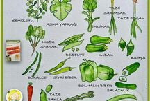 mevsimine göre sebzeler
