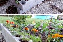 Garden beds/Greenhouses