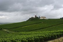 Day Trips From Paris  / by Paris Vacation Rentals - CobbleStay.com