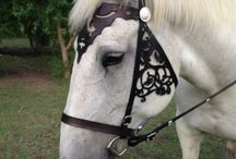 Horse Tack Ideas