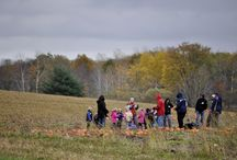 School Tours / Get a hayride to the Pumpkin Patch, see all the animals, and play on the farm!