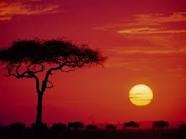 Travel Africa. (Kenya) / For a country of its size, Kenya sure packs a lot in: mountains and deserts, colourful tribal culture, beaches and coral reefs, and some of Africa's best wildlife attractions. In fact, to say Kenya is Africa in microcosm would not be stretching the point. There are a million different reasons to come here, and picking just one is nigh impossible.   / by ✈Top Travel Europe✈ Vacations Holidays
