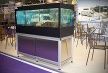 Viviers / Aquarium Services France c'est aussi les #Viviers !