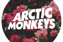 Arctic Monkeys / Arctic Monkeys, Alex tuner, banda
