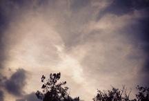 Physis / O fazer humano (poiético) distingue-se do fazer da natureza (autopoiético). A partir de Platão, os artistas, de quem o filósofo desconfia por produzirem cópias e simulacros, possuem o dom da tekhnè, que se manifesta em oposição ao saber teórico-contemplativo. Em Aristóteles a tekhnè mantém-se inferior à physis (natureza) por impossibilidade de auto-poiésis.