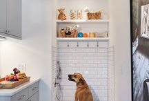 Pet Spaces