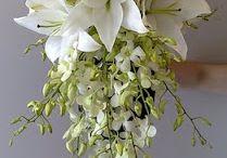 Art floral & Ikébana / by Annick Thévenot
