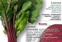Good health info/recipes
