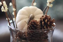 Fall decor / by Julie Freriks