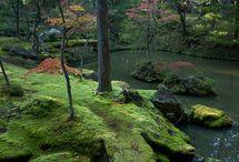 TRAVEL: Japan, Kyoto