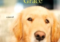 Photos of Grace  / Photos of the dear dog, taken by fans around the U.S.  She's getting around!