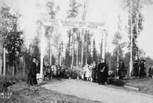 Alaska Colleges / You can also visit http://collegehistorygarden.blogspot.com/ for more information.