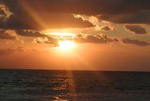 Kohli - Am Meer