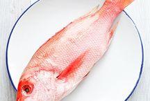 Seafood Culinary