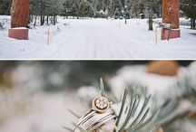 Winter Wonderland / Mood board inspiration for engagement sessions