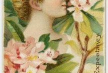 damas e flores