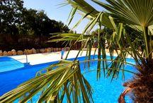 Kroatien Ferienhäuser