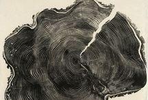 wood prints / wood prints