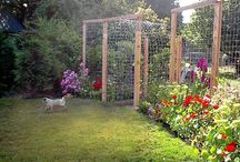Garden fences and pergolas