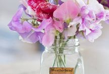 Lovely flowers center pieces / by Samantha Johnson