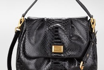 Handbag Envy