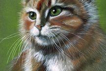 Kedi çizimleri