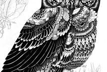 Art / Owl