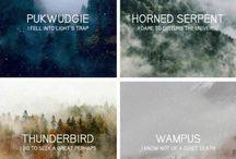 Harry Potter Fandom Dump