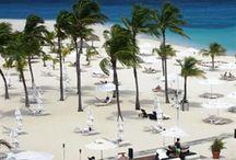 Hotels - Aruba / Hotels in Aruba