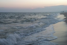 Gulf Shores / by Christina Hurst