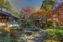 Jūrin-ji Temple, Autumn Season of 2015 in Kyoto! / Jūrin-ji Temple (十輪寺) is located in the rural Ōharano area of Kyoto along the road leading to Yoshimine-dera. The original temple built was built in 850 for the purpose of praying for the birth of a Fujiwara successor, and the prayers were believed to have worked, because the empress later gave birth to a boy, Emperor Seiwa (清和天皇). The temple you see today dates back to 1750. The temple's garden is really nice and especially beautiful in the fall.