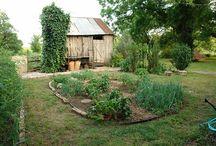 bahce/garden
