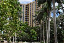 One Watergate /  1111 Gulfstream Avenue, Sarasota, FL 34236  http://dwellingwell.com/one-watergate-condos-sarasota.php
