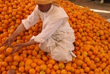 morocco moments