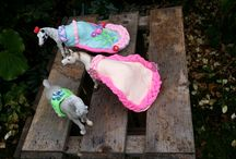 silk clay / create beautiful dresses and accessories to sleich animals