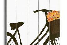 Bike ride / by Stephanie Bettencourt