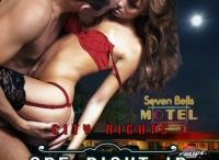 City Nights / City Nights is a unique erotic romance series with authors contributing stand-alone stories to the collection. Each book title starts One Night in . . . and takes place within a 24 hour time frame in a city somewhere in the world.  http://www.tirgearrpublishing.com/authors/City_Nights/index.htm