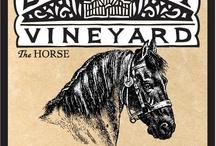 Wine / VA is home to many wineries. Yum!