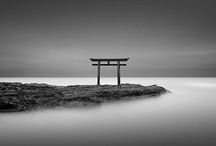 Minimalism & Long Exposures / There is beauty in simplicity. / by Gene Dailey