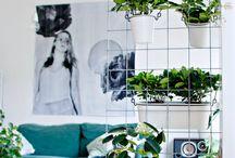 Garden, Indoor