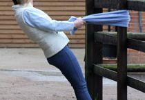 FenceGuides - Horse Fencing