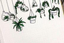 Droodels planter