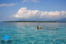 Tour and Travel to Bali